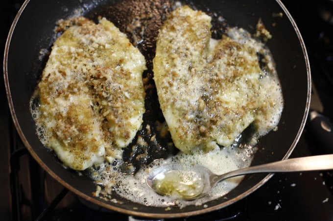 pan fried tilapia, butter, panko, fry, fried, fish, food, foodie, foodist, food blog, the brooklyn cook, seafood